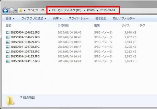rexifer-folder06